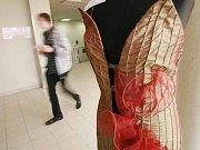Soutěžní přehlídka originální módy učňovských škol Avantgarda na lyském výstavišti.