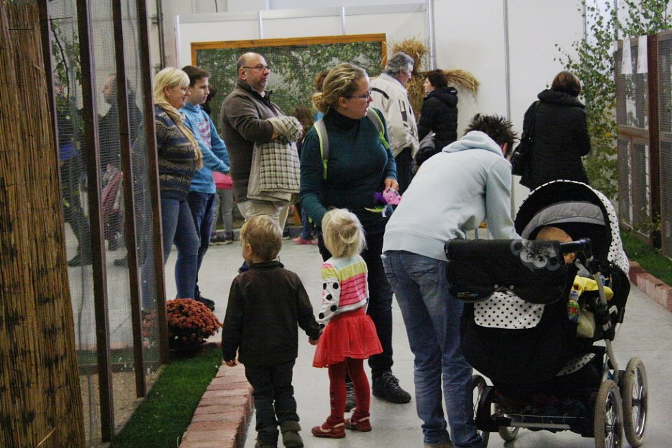 Výstava Exotika 2016 v Lysé nad Labem.
