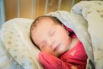 Nella Šafaříková, Nehvizdy. Narodila se 8. ledna 2020 v 13.44 hodin, vážila 3 380g a měřila 50 cm. Z holčičky se radují rodiče Michaela a Jakub a sourozenci Šimon (11 let) a Sebastian (2 roky).