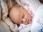 NATÁLKA MALÍKOVÁ se narodila 4. prosince 2018 v 19.56 hodin s délkou 50 cm a váhou 3 080g. Maminka Alena a tatínek Filip si očekávaného prvorozeného syna odvezou do Poděbrad.