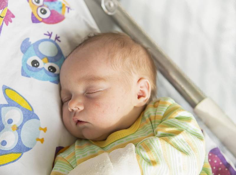Mia Hrebeňárová se narodila v nymburské porodnici 2. října 2021 v 7:16 hodin s váhou 3100 g a mírou 47 cm. V Nymburce se z holčičky raduje maminka Blanka, tatínek Matěj a bráška Matyáš (3 roky).