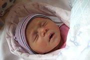 ANNA KULAWIAKOVÁ se narodila 26. října 2018 v 18.48 hodin s délkou 48 cm a váhou 3 200g. Rodiče Veronika a Radek z Nymburka se na prvorozenou holčičku předem těšili.