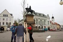 Na poděbradském náměstí zasadí nové stromy