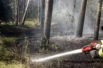 Požár hrabanky o přibližné rozloze 15 x 15 metrů dostali hasiči rychle pod kontrolu.