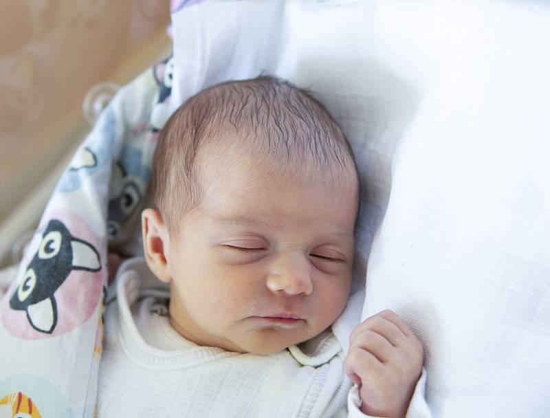 Lucie Čepičková se narodila v nymburské porodnici 16. září 2021 v 7:36 s váhou 3170 g a mírou 46 cm. V Milovicích se na holčičku těšili maminka Jaroslava, tatínek Jakub a sestřička Viktorie (3 roky).