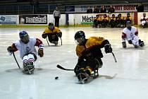 Momentky ze sobotního zápasu v para hokeji, kdy Češi zdolali Němce 3:2 v prodloužení.