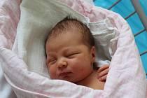 O NATÁLCE SE VĚDĚLO. NATÁLIE BORDE se vypravila na svět 7. března 2017 v 4.51 hodin. Míry malé slečny byly 3 440 g a 48 cm. Mamince Renatě a tátovi Martinovi z Kolajů přibyla do rodinné sbírky  k  dvouleté Nikolce další holčička.