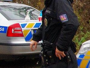 Ilustrační foto policie