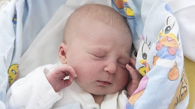 Viktorie Prokešová z Přerova nad Labem se narodila v nymburské porodnici 22. září 2021 v 15:29 s váhou 2 600 g a mírou 46 cm. Z prvorozené holčičky se raduje maminka Marcela a tatínek Josef.