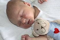 ANIČKA RODIČE NEPŘEKVAPILA. ANNA KRONUSOVÁ  spatřila světlo porodního sálu 29. července 2016 ve 22:30 hodin. Rodiče Jelena a Pavel jsou Nymburáci, kteří o prvorozené holčičce s mírami 4 090 gramů a 52 centimetrů dopředu věděli.