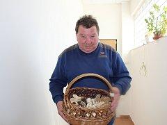 Smrže, kačenky, májovky. To jsou první houby, které zahajují na Nymbursku  letošní houbařskou sezonu. Houbař Jiří Stránský jich nasbíral plný košík.