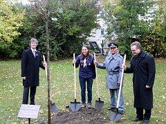 Pietní akt, proslovy a vysazení Stromu svobody připomněly v Nymburce 100 let od vzniku republiky.