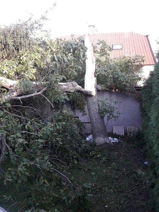 Jednotky HZS Poděbrady, Nymburk a SDH Velké Zboží vyjely k likvidaci stromu, který spadl na osobní automobil a částečně na dům.