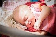 Anděla Koutová, Velký Osek. Narodila se 8. června 2019 ve 17.16 hodin, vážila 2 730 g a měřila 47 cm. Na svou první holčičku se těšila maminka Markéta a tatínek David.