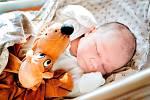 Jáchym Myška, Nymburk. Narodil se 18. listopadu 2019 v 16.39 hodin, vážil 4 190g a měřil 52 cm. Mimině se může těšit z lásky maminky Lucky a tatínka Michala.