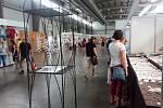 Na lyském výstavišti se sešly výstavy Květy a Festival umění. Foto: Deník/Lukáš Trejbal