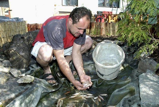 Majitel ZOO Miroslav Dubina loví mrtvé ryby.