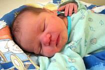 BARBORKA BYLA PŘEKVAPENÍ. Rodiče Martin a Marie z Milovic se nechali překvapit a v úterý 14. dubna v 19.18 hodin se jim narodila holčička Barbora Fassingerová. Novorozená měřila 48 cm a vážila 3400 g. Těší se na ní sourozenci Filip a Anna.