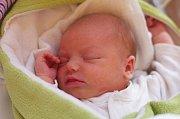 ROZÁLIE NOVÁKOVÁ se narodila 30. ledna v 8.29 hodin s váhou 3050 g a výškou 48 cm. Rodiče Karolína a Jiří do poslední chvíle nevěděli, že budou mít děvčátko. Bráška Jiříček (2,5 roku) na ni čeká doma v Rozkoši u Kostomlat nad Labem.