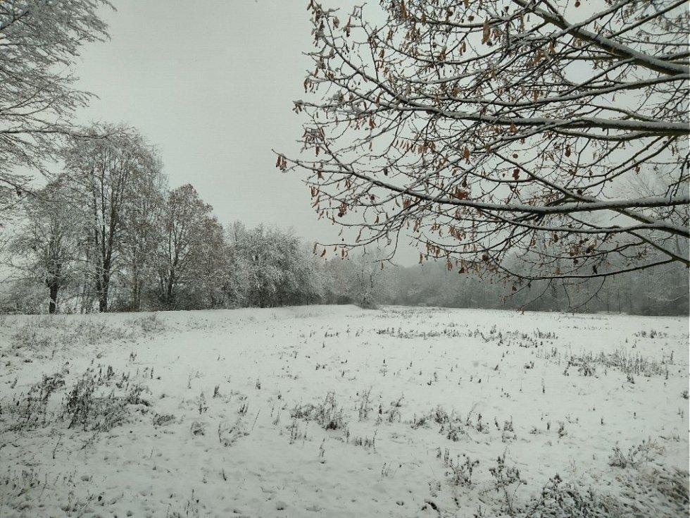 Sněhová nadílka v Libici nad Cidlinou objektivem Františka Kubíčka.