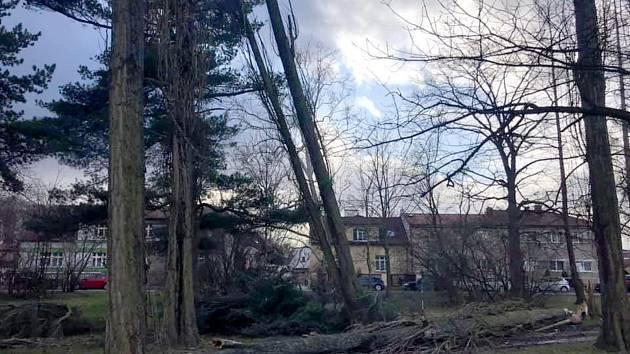 Následky řádění orkánu Sabina v Poděbradech.