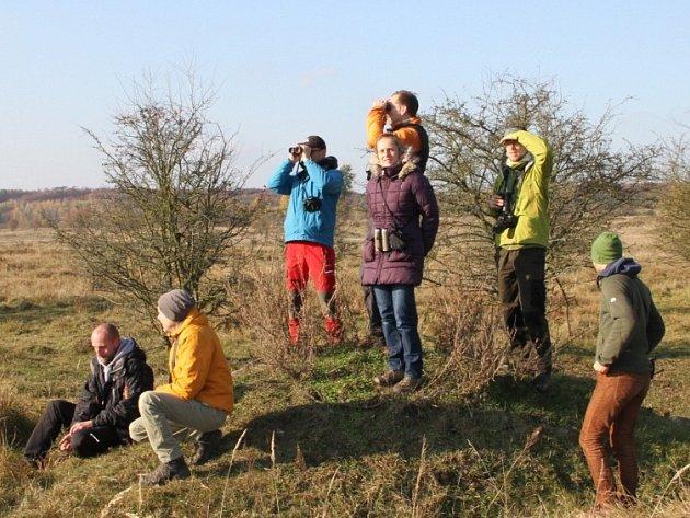 Rakouští odborníci při sledování velkých kopytníků v milovické rezervaci.
