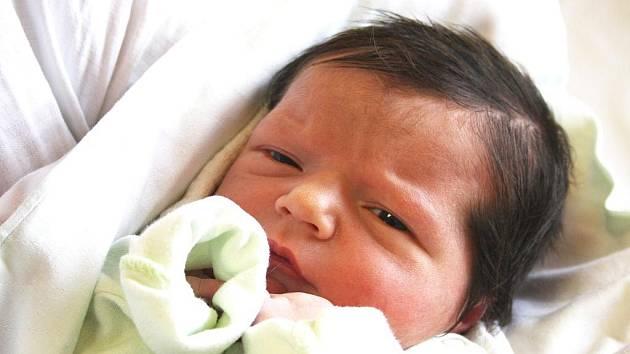 LUCINKA MÁ SESTŘIČKU. Rodičům Daně a Janovi i sestřičce Lucince se v neděli 12. února 2012 narodila předem očekávaná holčička Anetka Klysáková. Anetka přišla na svět ve 22.13 hodin s mírami 52 cm a 3 520 g. Doma je v Bobnicích.