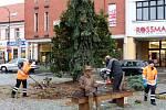 V pondělí dopoledne byly vykáceny na severní části nymburského náměstí jehličnany a keře.