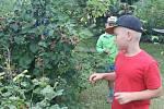 Děti na táboře poznaly nymburskou přírodní zahradu.