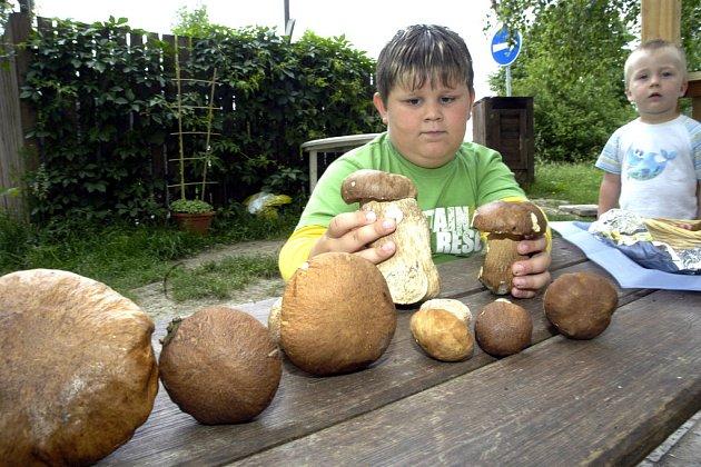 Devatenáct hřibů našel v Milovicích sedmiletý Jiří Šíma.