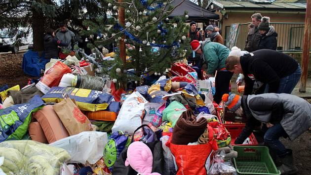 Opuštění psi v lyském útulku dostali nadílku na Štědrý den dopoledne.