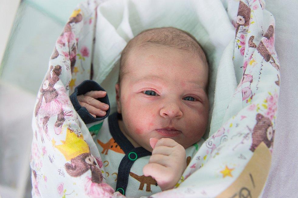 Anežka Devátá z Radimi se narodila v nymburské porodnici 13. ledna 2021 v 4:08 hodin s váhou 3610 g a mírou 49 cm. Holčičku očekávali maminka Iveta, tatínek Josef a sestřičky Jozefína (5 let) a Žofie (3 roky).