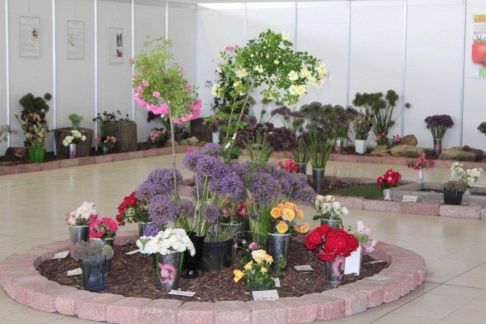 Výstava Růžová zahrada, Výstaviště Lysá nad Labem, rok 2018.