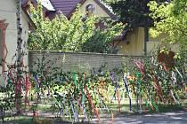 Ve které obci na Nymbursku o víkendu slavili Máje?