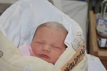 O NELINCE SE VĚDĚLO. NELA HÜBLBAUEROVÁ je malá slečna narozená 9. listopadu 2016 v 13.26 hodin. Její míry byly 2 960 g a 47 cm. Maminka Marie a táta Tomáš se budou radovat ze svého prvorozeného miminka doma v Ostré.