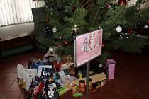 Pod stromečkem na nymburské radnici už jsou dárky pro zvířátka.