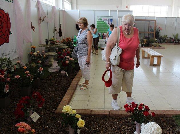 Nejen růže mohou obdivovat návštěvníci výstavy Růžová zahrada, která probíhá do neděle na Výstavišti v Lysé nad Labem.