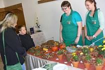 Podzimní výstava na Střední odborné škole a učilišti v Městci Králové