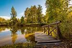 Vítězným projektem se v hlasování obyvatel Poděbrad stala revitalizace vodních toků a ploch v lesoparku Obora.