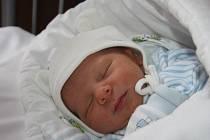 BENJAMÍNEK HONZÍK. JAN BOHÁČEK se narodil 16. listopadu 2016 v 8.57 hodin. Klouček s mírami  3 270 g a 49 cm má v Českém Brodě rodiče Kateřinu a Jana a hned dvě sestry: Anetu (18) a Terezu (15).