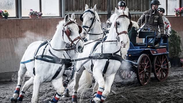 Zimní jezdecký pohár v Hradištku 2018, Josef Hrouda