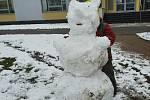 Sněhulák - méďa, 7. ledna 2021.