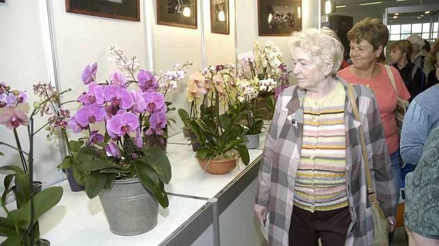 Ve čtvrtek začíná na lyském Výstavišti výstava Květy.