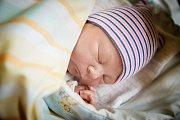 JAKUB STEJSKAL se narodil 16. prosince 2018 v 15.42 hodin s délkou 49 cm a váhou 3 340g. Malý Jakub dostal jméno po svém otci, který si ho s maminkou Janou odvezl do Prahy. Těší se na něho i jeho dva bratříčci a sestřička.