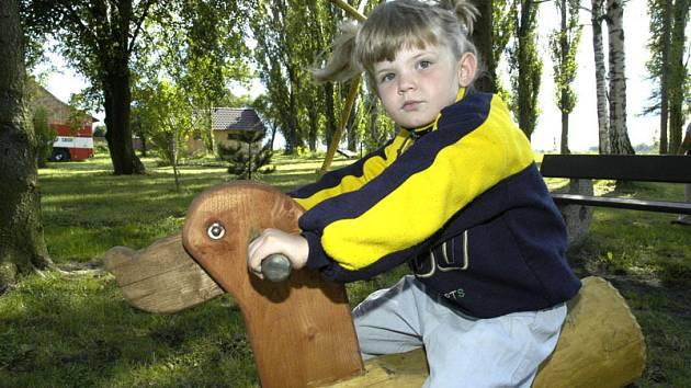 Anketa o stavu dětských hřišť v Nymburce ukázala, že rodičům chybí na dětských pláccích hlavně oplocení a zajištění proti zvířatům, ale také stromy, které by poskytovaly dětem stín.