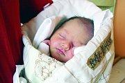 ANASTÁZIE Bořek – Dohalská (48 cm, 3 080 g) se narodila 18. 11. 2017 v 16.22 hodin rodičům Kláře a Antonínovi.