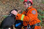 Pád psa do hlubiny zaměstnal hasiče v sobotu 6. června vpodvečer.