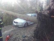 V Hradištku se během pátečního dopoledne vyvrátil i s kořeny vzrostlý smrk a spadl na přední část osobního auta.