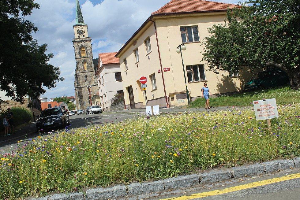 Jeden z projektů navrhuje vybudování podobných květinových ploch, jaké se loni objevili na křižovatce u Labe pod budovou soudu.