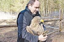 Vedoucí stanice pro zraněná zvířata Luboš Vaněk při určování zranění samice orla mořského.
